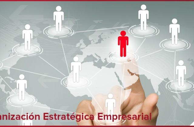 Sanexabia: una organización estratégica es vitalpara el crecimiento de la empresa